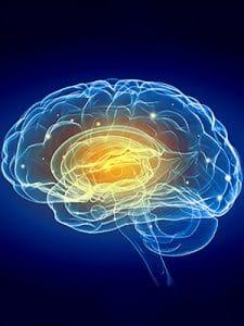 Brain Training May Change How Brain Uses Sensory Data